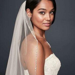 David's Bridal wedding veil